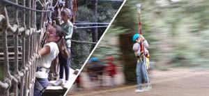 mont bosc Vertical1